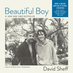 Beautiful Boy by David Sheff