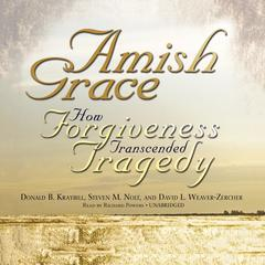 Amish Grace by Donald B. Kraybill, Steven M. Nolt, David L. Weaver-Zercher