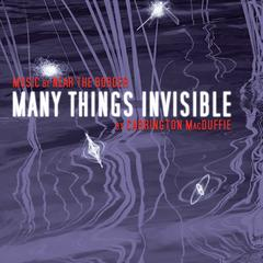 Many Things Invisible by Carrington MacDuffie