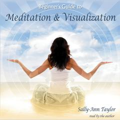 Beginner's Guide to Meditation & Visualization by Sally-Ann Taylor