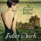 The Angel Stone by Carol Goodman