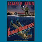 A Blind Goddess by James R. Benn