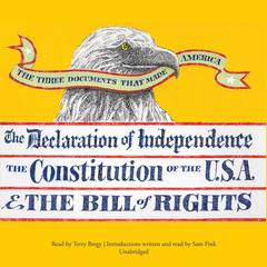 The Three Documents That Made America by Sam Fink