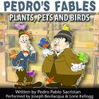 Pedro's Fables: Plants, Pets, and Birds by Pedro Pablo Sacristán