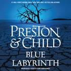 Blue Labyrinth by Douglas Preston, Lincoln Child