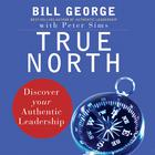True North by Bill George, Peter Sims