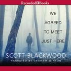 We Agreed to Meet Just Here by Scott Blackwood