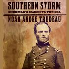 Southern Storm by Noah Andre Trudeau