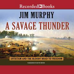 A Savage Thunder by Jim Murphy