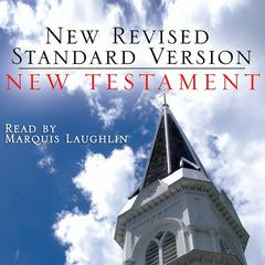 The New Testament by Oasis Audio