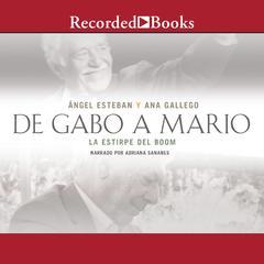 De Gabo a Mario by Ana Gallego, Angel Esteban