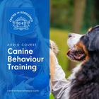 Canine Behaviour Training by Centre of Excellence