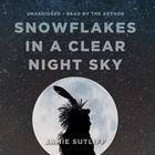Snowflakes in a Clear Night Sky by Jamie Sutliff