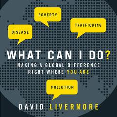What Can I Do? by David Livermore
