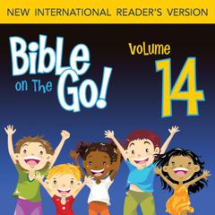 Bible on the Go Vol. 14: The Story of Ruth (Ruth 1-4) by Zondervan