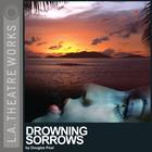 Drowning Sorrows by Douglas Post