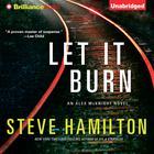 Let It Burn by Steve Hamilton