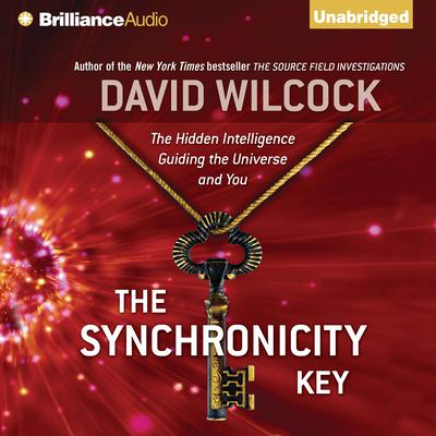 The Synchronicity Key by David Wilcock
