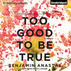 Too Good to Be True by Benjamin Anastas