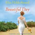 Beautiful Day by Elin Hilderbrand