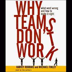 Why Teams Don't Work by Harvey Robbins, Michael Finley