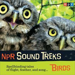 NPR Sound Treks: Birds by NPR