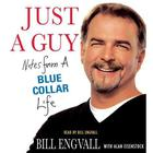 Just a Guy by Bill Engvall, Alan Eisenstock