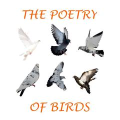 The Poetry of Birds by Percy Bysshe Shelley