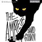 The Amateur by David Gordon