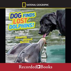 Dog Finds Lost Dolphins by Elizabeth Carney