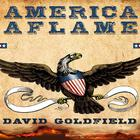 America Aflame by David Goldfield