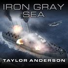 Destroyerman: Iron Gray Sea by Taylor Anderson