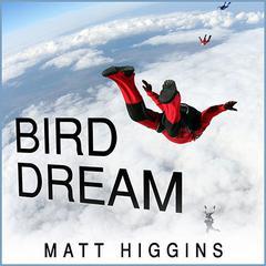 Bird Dream by Matt Higgins