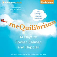 meQuilibrium by Jan Bruce, Adam Perlman, M.D., Andrew Shatte, Ph.D., Andrew Shatte, Adam Perlman