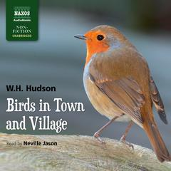 Birds in Town and Village by William Henry Hudson