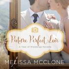 Picture Perfect Love by Melissa McClone