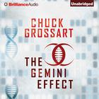 The Gemini Effect by Chuck Grossart