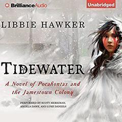 Tidewater by Libbie Hawker