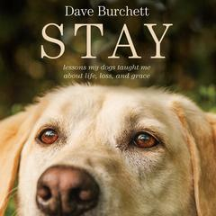 Stay by Dave Burchett