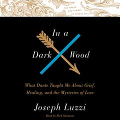 In a Dark Wood by Joseph Luzzi