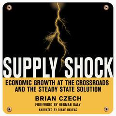 Supply Shock by Brian Czech