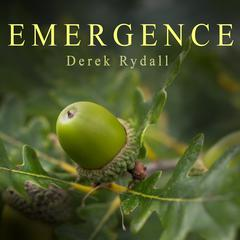 Emergence by Derek Rydall