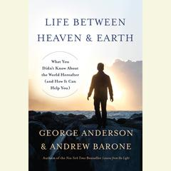 Life between Heaven and Earth by George Anderson, Andrew Barone