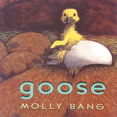 Goose by Molly Bang