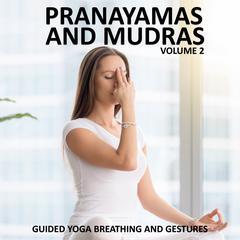 Pranayamas and Mudras Vol 2 by Sue Fuller