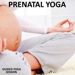 Pre Natal Yoga by Sue Fuller