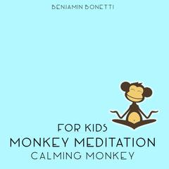 Calming Monkey by Benjamin Bonetti