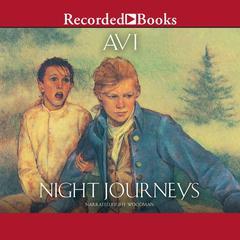 Night Journeys by Avi