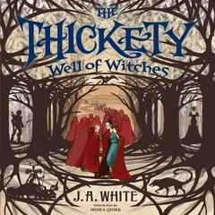 Well of Witches by J. A. White