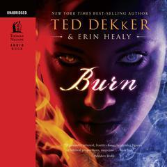 Burn by Ted Dekker, Erin Healy